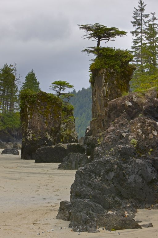 San Josef Sea Stacks