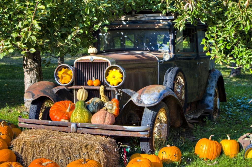 Old Car Autumn Orchard