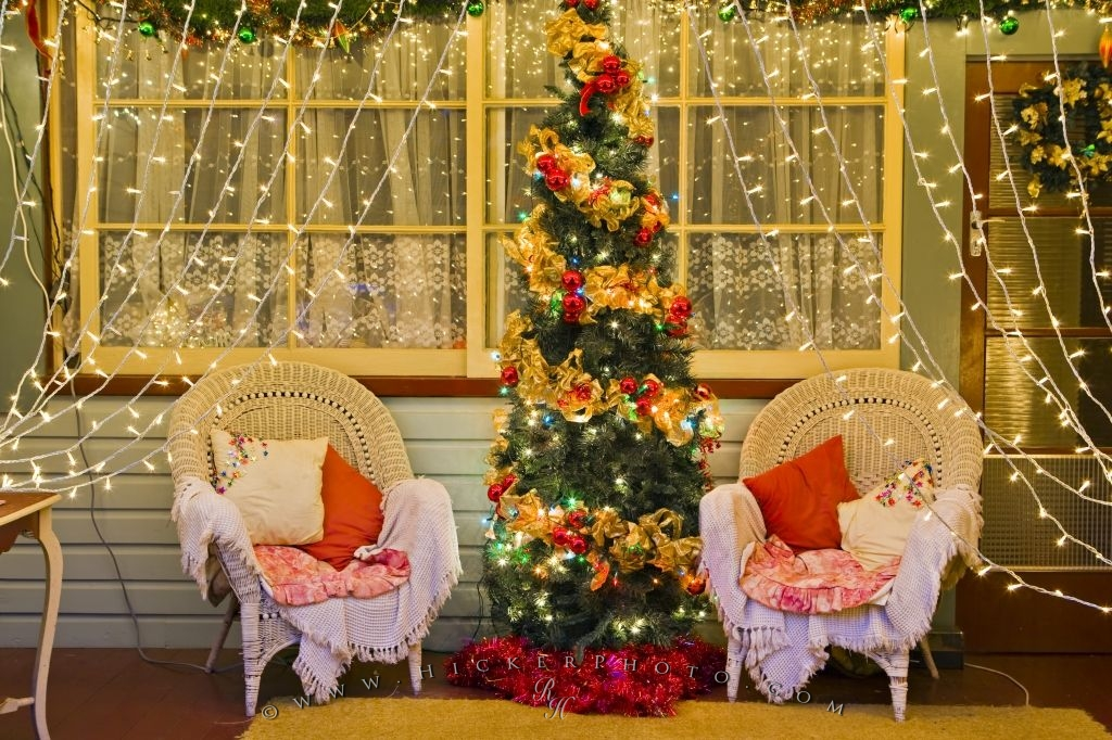 Elegant Decorated Christmas Lights And Tree Scene | Photo, Information