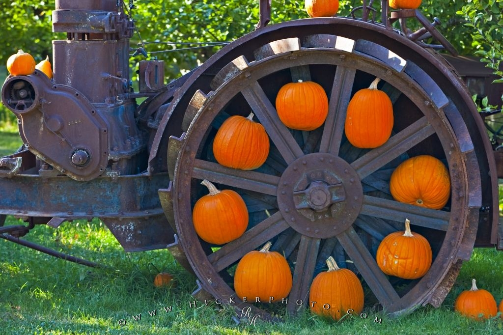 Orange Pumpkin Wheel Display Fall Picture
