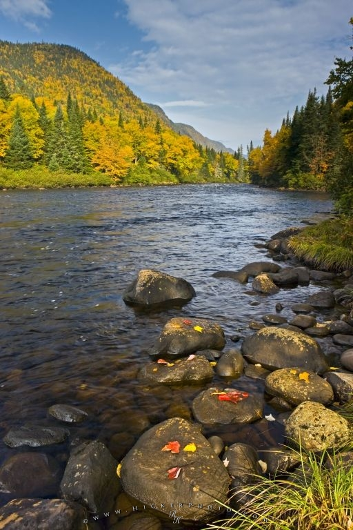 Parc De La Jacques Cartier River Fall Scenery Picture Quebec