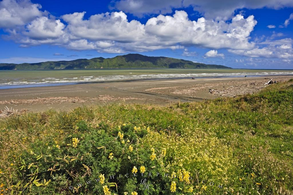 Raumati South Kapiti Island New Zealand