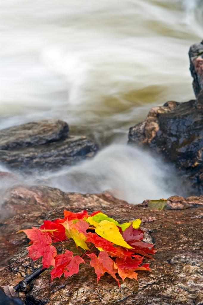 Red Fall Leaves Waterfall
