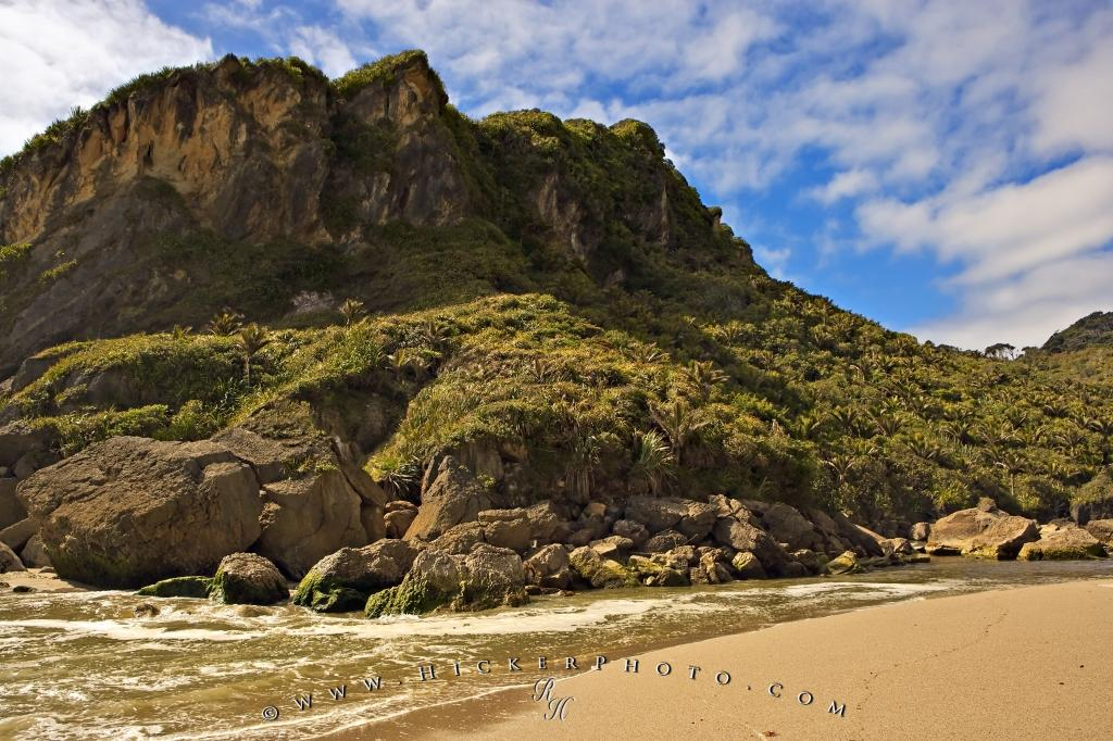 Scenic Beach Landscape West Coast New Zealand