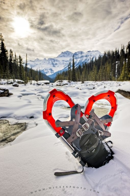 Free Wallpaper: Snowshoes Mistaya River Winter Recreation