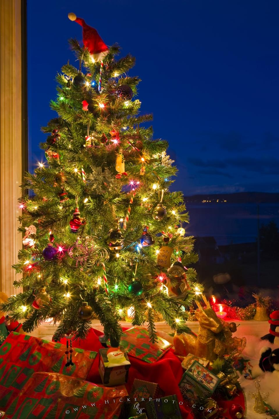 Free Wallpaper Size 1440px Photo Traditional Christmas Tree