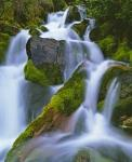 photo of Waterfall Pictures