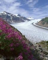 Salmon Glacier in Misty Fjord National Monument on the Alaska and British Columbia Border.