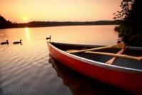 Algonquin Provincial Park is a famous family vacation spot in Ontario, Canada