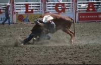 Many different Cowboy Symbols can be seen at the famous Calgary Stampede in Calgary, Alberta