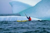 A very unique experience is an adventurous sea kayaking tour along Iceberg Alley in the Atlantic Ocean of the Newfoundland Labrador coast in Canada.