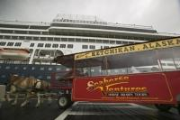 Famous Ketchikan activity is to take a horse dranw tour through town.