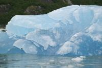 glacier tour alaska