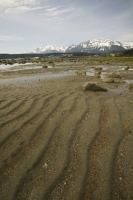 beach near haines
