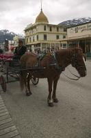 buggy tours skagway
