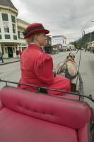 alaska vacation package horse buggy tour