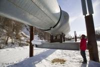 Tourist looking at Alaska Oil Pipeline