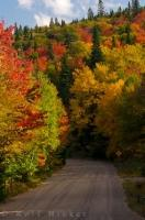 The brilliance of the Autumn colored trees is spectacular along Highway 2 which winds through Parc national du Mont Tremblant in Quebec, Canada.