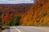 Autumn has arrived in this view along the road through Algonquin Provincial Park. The changing scenery in this picture stretches on for miles and the autumn colours of the leaves make the landscape even more beautiful.