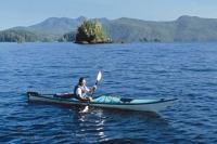 A popular vacation activity during a visit to Vancouver Island in BC, Canada is sea kayaking particularly with killer whales.