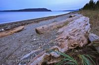 Beach Scenery Picture Denman Island British Columbia