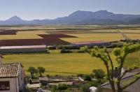 The view from the village of Berdun in Huesca, Aragon in Spain looks over the miles of beautifully manicured wheat fields.