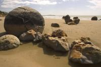 The Moeraki Boulders or big naturals are among the top tourist attractions in the South Island's East Coast near Oamaru in New Zealand.