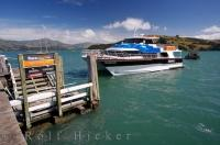 The Black Cat catamaran cruises into the dock in the Akaroa Harbour after an exciting day on the water around the South Island of New Zealand.