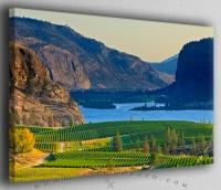 Okanagan Blue Mountain Vineyard
