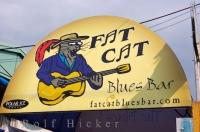 The bright artistic sign to the entrance of the Fat Cat Blues Bar in St. John's in Newfoundland Labrador in Canada.