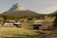 Located in Southern Alberta, the Bohomolec Stables and world class horse breeders.