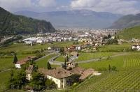 Vineyards nestled in the valley near Bozen in the South Tyrol, Italy.
