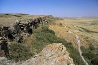 A must see during a vacation through southern Alberta is the UNESCO World Heritage site of Head Smashed in Buffalo Jump near Fort Macleod.