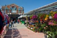 The outdoor flower stall at the Byward Market in Ottawa, Ontario in Canada is one of the best places to buy fresh flowers and plants.