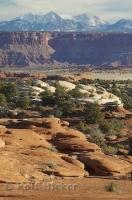 Canyonlands Canyon