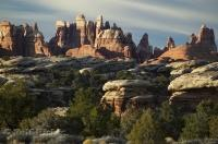 canyonlands needles district