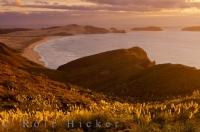 Cape Reinga Sunset Northland New Zealand