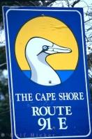 Cape Shore Road Sign Newfoundland