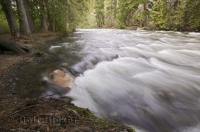 The Cayoosh Creek is a pristine river that flows from Duffy Lake in British Columbia, Canada.