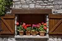 Ceramic flower pots with blossoming flowers line the window ledge of the stone building in the village of Hecho in Huesca, Aragon in Spain.