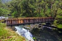 A hiking track wends through the dense native bush to a foot bridge which passes over Chasm in Fiordland National Park, NZ.