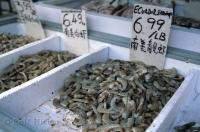 Fresh seafood, produce, and herbal remedies are all available in the Chinatown markets in downtown Toronto, Canada.