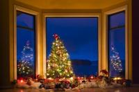 A beautiful display in a bay window at dusk with the decorated Christmas tree illuminated by dozens of colourful lights.