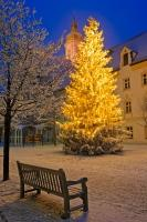 A beautiful christmas scene in the historic square of the Landratsamt at night in the city of Freising, Germany.