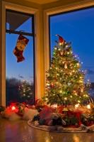 A Christmas tree decorated with multi-coloured lights and topped with a Santa hat stands in a windowich where a Christmas stocking is hung.