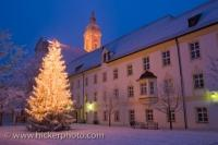 Christmas Tree Landratsamt Neustift Freising Bavaria Germany