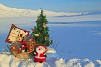 Christmas Gifts Landscape Alaska Photo