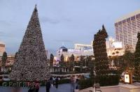 There are many family vacation packages available during the Christmas season that take you on a spectacular trip to Las Vegas, Nevada.