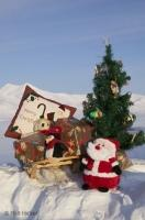 A natural photographed christmas scene with some gifts on a small wooden sleigh, a small Santa Claus and a decorated christmas tree.