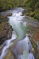 Flowing Water Scenic Cleddau River Fiordland National Park New Zealand
